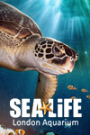 SEA LIFE London Aquarium: Entradas Preferentes