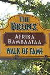 Touren durch die Bronx