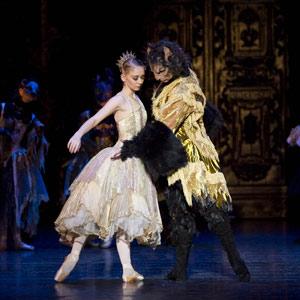 Oplev den klassiske historie om det hæslige bæst og den smukke pige, som forelsker sig på trods af alle forhindringer i balletudgaven af Beauty and the Beast.