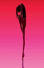She Said - English National Ballet