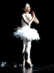 Nicht Schlafen - Les Ballet C de la B