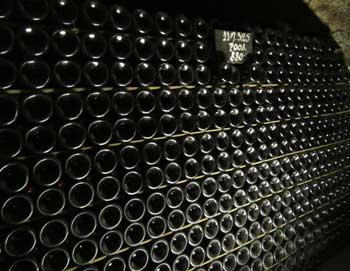 Bestil en heldagstur fra Paris til Reims-regionen! Besøg en champagne- og vinkælder, smag champagne og få en rundtur i Reims. Frokost er inkluderet.