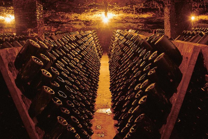 Wein- und Cava Tour