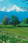 Dagstur till Salzburg
