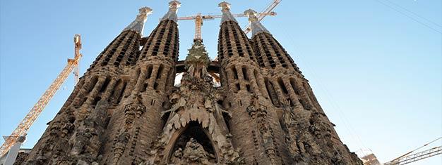 Évitez les files d'attente à l'incroyable Sagrada Familia. Avec votre guide découvrez l'histoire de cette basilique. Réservez en ligne!