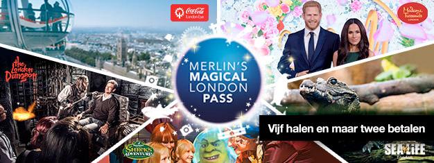 Koop 2 en krijg er 3 top attracties bij! Bezoek Madame Tussauds, London Eye, London Aquarium + Shrek's Adventure en London Dungeon. Boek online!