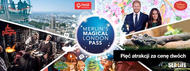 Kup bilety do dwóch miejsc i odbierz dodatkowe trzy za darmo! Odwiedź Madame Tussauds, London Eye, SEA LIFE London Aquarium, Shrek's Adventure i London Dungeon.