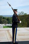 Tur till Mount Vernon & Arlington National Cemetery