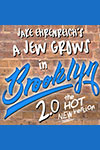 A Jew Grows in Brooklyn 2.0
