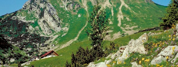 Join us tour through German Alpine Road and impressive valleys to Berchtesgaden. On the Obersalzberg mountain, you can visit Eagle's Nest. Book online!