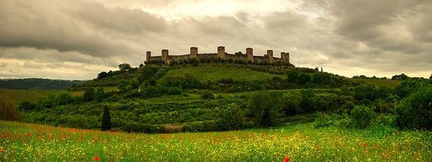 5 heures de Visite sur laroute des vins à Chianti, avec une visite des forteresses de Monteriggioni et Castellina à Chianti. Réservez dès maintenant!