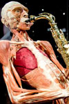 Tickets to Body Worlds - The Happiness Project