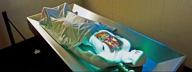 Hyppää rikosetsivän rooliin CSI: The Experience- elämyksessä Las Vegasissa ja auta löytämään kolmen murhan syyllinen. Varaa CSI: The Experience täällä!