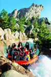 Disneyland Park & Disney California Adventure Park