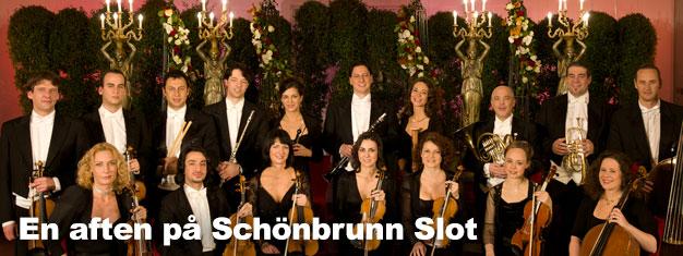 En aften på Schönbrunn Slot i Wien er en uforglemmelig oplevelse. Kombiner din Schönbrunn Slot sightseeing billet med middag og koncert på Orangeriet!