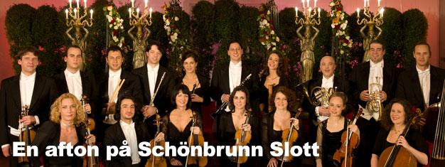 Biljetter till en oförglömlig Afton på Schönbrunn Slott i Wien! Kombinera din Schönbrunn sightseeing biljett med en middag eller en konsert på Orangeriet!