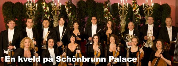 En kveld påSchönbrunn Palace i Wien er uforglemmelig. Kombiner dinSchönbrunn Palace turbillett i Wien med en fin middag eller konsert på Orangeriet.