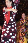 Flamenco-Esitys Torres Bermejasissa