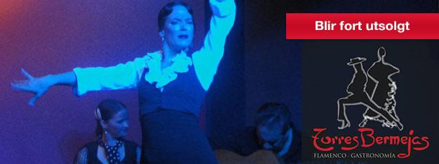 Flamenco Show hos Torres Bermejas I Madrid er et ekte og tradisjonellt Flameco Show. Billetter til Torres Bermejas i Madrid her!