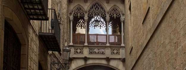 Explore Barcelona's Gothic Quarter, the city's most charming neighborhood, with your guide. Learn about the history of Barcelona. Book tickets online!