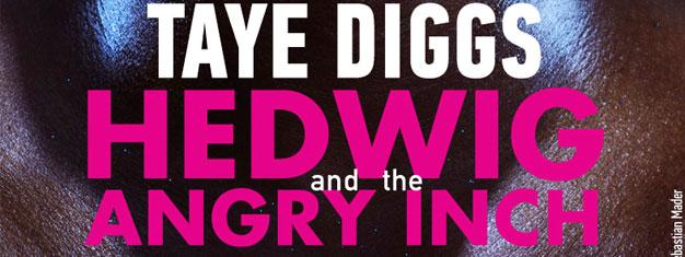 Das MusicalHedwig and the Angry Inch ist ein echtes Rockmusical über die ostdeutsche Transgender-Sängerin Hedwig und ihrer fiktiven Rockband. Tickets online buchen!