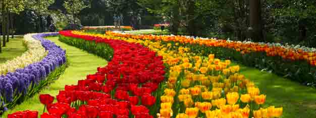 Visit Keukenhof Gardens: Over 32 hectares covered with more than 7 million blooming tulips, daffodils & hyacinths. Book here and spring the line.!