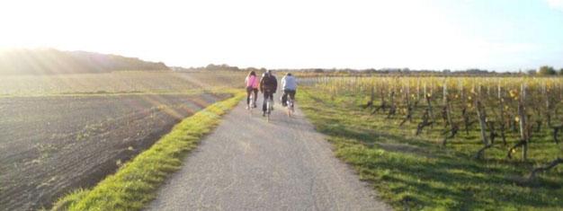 Nli med på en sykkeltur i Loiredalen utenfor Paris! Besøk to chateaux'er, et marked og nyt en vinsmakin på kun én dag. Bestill turen din her!