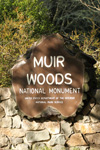 Tickets voor Hop-On Hop-Off + Muir Woods