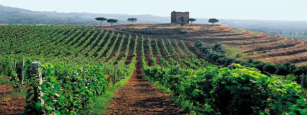 Disfruta una cata de vino en la impresionante finca Pallavicini. Prueba dos vinos galardonados. Reserva en línea!