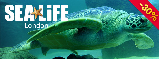 Sea Life London Aquarium has one of Europe's largest collections of marine life. Experience over 500 species and plants and over 40 different kinds of sharks. Book online!