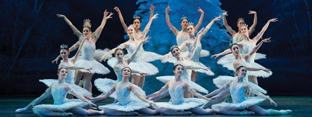 Casse-Noisette est un ballet classique de Noël rempli d'incroyables aventures et bénéficiant d'une musique enchanteresse. Réservez vos tickets en ligne!