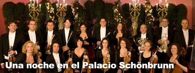 Una Noche en el Palacio Schönbrunn será inolvidable. Combina tu entrada al Palacio Schönbrunn en Viena con una cena o un concierto en el Oragnery!