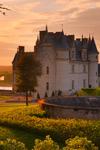 Tur til slottene i Loiredalen