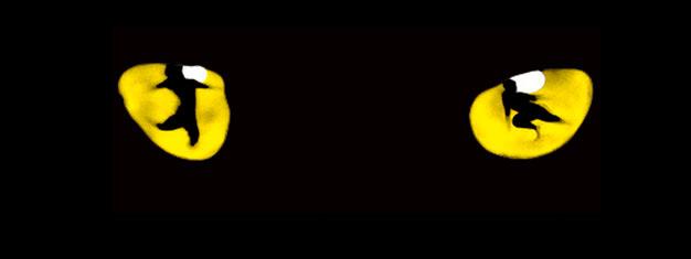 De award-winning musical Cats is terug. Mis deze legendarische musical van Andrew Lloyd Webber niet. Boek uw tickets, en laat de herinnering herleven!