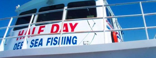 Nyd en heldagstur med dybhavsfiskeri i Mexicos Golf. Udforsk fantastiske Clearwater Beach og tilbring en dejlig dag på havet. Bestil din tur online!