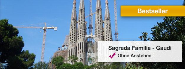 Sagrada Familia auf zweistündigerTour! erkunden! Gaudis unvollendetes Meisterwerk in Barcelona! Ohne Anstehen mit Ihrem Guide.Tickets online buchen!