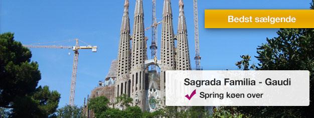 Udforsk Sagrada Familia på denne 2-timers guidede tur! Oplev Gaudis ufærdige mesterværk! Spring køen over med din guide. Bestil din tur online!