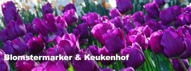 Beøsg Keukenhof-haverne i foråret. Bestil her og undgå de lange køer sammen med vores guide. Transport til/fra Amsterdam er inkl. Book nu!
