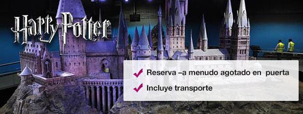 Descubre dónde cobró vida la película de Harry Potter con este tour tras bastidores. Prueba el Hogwarts Express! Compra entradas en línea y salta las colas en taquilla!