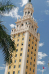 Tour in die Everglades und nach Miami