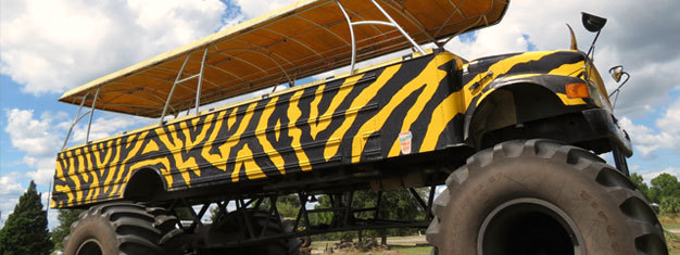 Enjoy a fun and exhilarating ride on a massive monster truck through the beautiful orange groves! It's fun for children and adults alike! Book online!