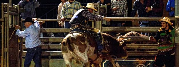 Oplev en ægte western ranch med en gammeldags, traktortrukket høtur, en lækker barbeque buffet og en tur i rodeo! Bestil dine billetter hjemmefra!