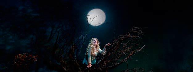 Rusalka av Dvorak var med och la grunden för tjeckisk opera. Spelas nu på Metropolitan i New York. Boka dina biljetter till Rusalka online!