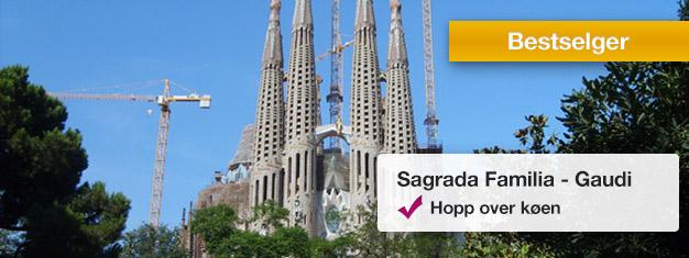 Utforsk Sagrada Familia på denne 2-times turen! Oppdag Gaudis uferdige mesterverk i Barcelona! Slipp køen, bestill på nettet!