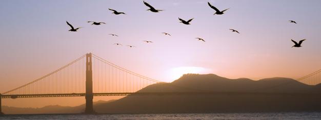 Biljetter till kvällstur San Francisco by Night! Upplev San Franciscos mest intressanta stadsdelar och sevärdheter på kvällen. Boka din SF aftontur här!