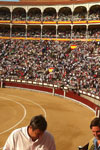Madrid Sightseeing Tour and Bullfighting