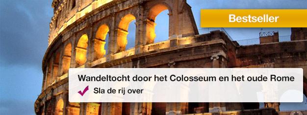 Neem een rondleiding door het Colosseum en het Romeins Forum en vermijdt de lange wachtrijen bij de ingang in gezelschap van uw gids! Leer over het oude Rome. Boek tickets online!