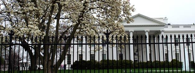 Näe DC päivässä! Näet kaikki Washington DC:n kuuluisat nähtävyydet, kuten Valkoisen talon, U.S. Capitol -rakennuksen & toisen maailmansodan muistomerkin! Osta nyt!