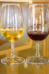Évora & vinprovning