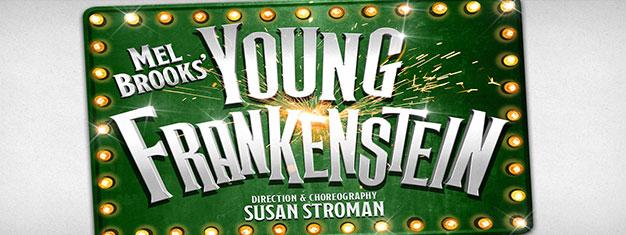 El cómico legendario Mel Brooks trae su clásica comedia musical Young Frankenstein al escenario de Londres. Reserva tus entradas aquí!